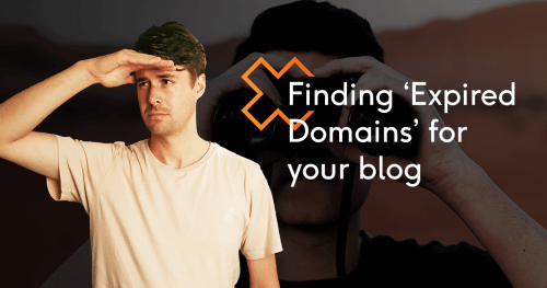 Finding Expired Domains for your Blog: More Traffic from Day 1